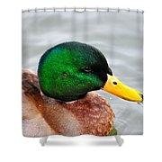Green Head Shower Curtain