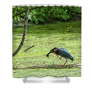Green Heron Lunch Shower Curtain