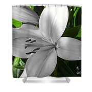 Green Highlighted Lily Shower Curtain