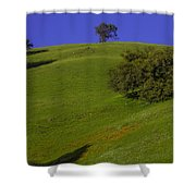 Green Hill With Poppies Shower Curtain