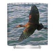 Green Ibis 6 Shower Curtain