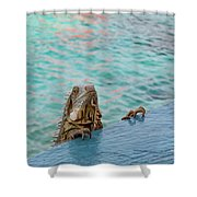 Green Iguana Peering Over Wall Shower Curtain