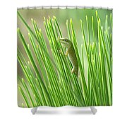 Green Is Good Shower Curtain