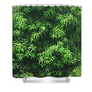 Green Is Life Shower Curtain
