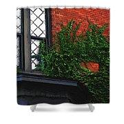 Green Ivy Garnet Brick Shower Curtain