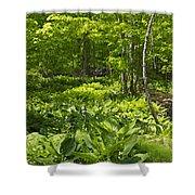 Green Landscape Of Summer Foliage Shower Curtain