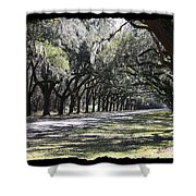 Green Lane With Live Oaks - Black Framing Shower Curtain