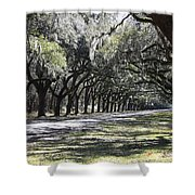 Green Lane With Live Oaks Shower Curtain