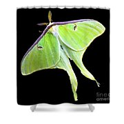 Green Lantern Moth Shower Curtain