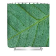 Green Leaf 1 Shower Curtain