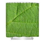 Green Leaf Texture Shower Curtain