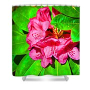 Green Leafs Of Pink Shower Curtain