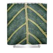 Green Structures Shower Curtain