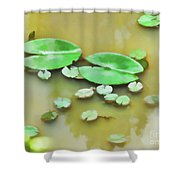 Green Lotus Leaf In The Lake Shower Curtain