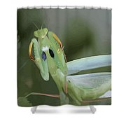 Green Mantis With Garden Background Vector Shower Curtain
