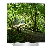 Green Nature Bridge Shower Curtain
