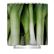 Green Onion Market Bergen Shower Curtain