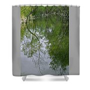 Green Peace - Trees Reflection Shower Curtain
