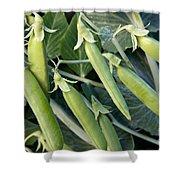 Green Peas Shower Curtain