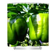 Green Peppers Shower Curtain