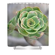 Green Petals Shower Curtain