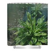 Green Plant And Pink Flowers  Shower Curtain