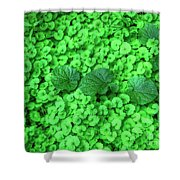 Green Plants Shower Curtain