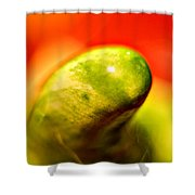 Green Red Liquid Clay Shower Curtain