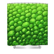 Green Scales Shower Curtain