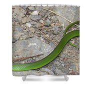 Green Snake Shower Curtain