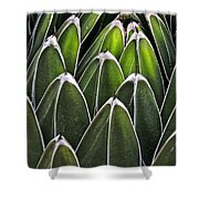 Green Spines Shower Curtain