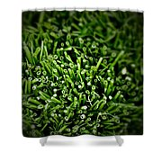 Green Stalks Shower Curtain