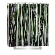 Green Sticks Shower Curtain