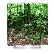 Green Stony Forest In Vogelsberg Shower Curtain