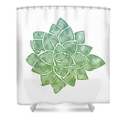 Green Succulent 1- Art By Linda Woods Shower Curtain by Linda Woods