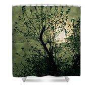Green Sunset Shower Curtain