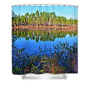Green Swamp In December Shower Curtain
