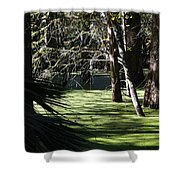 Green Swamp Near Camps Canal Shower Curtain