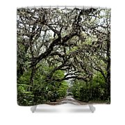 Green Swamp Oak Bower Shower Curtain