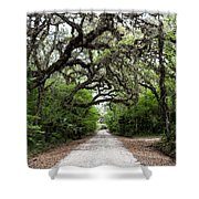 Green Swamp Tunnel Shower Curtain