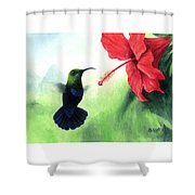 Green-throated Carib Hummingbird And Red Hibiscus Shower Curtain