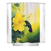 Green-throated Carib Hummingbird And Yellow Hibiscus Shower Curtain