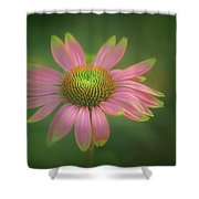 Green Tipped Coneflower Shower Curtain