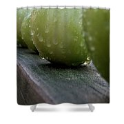 Green Tomato's Shower Curtain