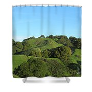 Green Trail Shower Curtain
