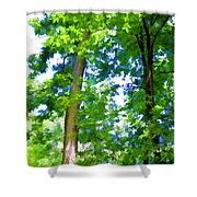 Green Trees 1 Shower Curtain