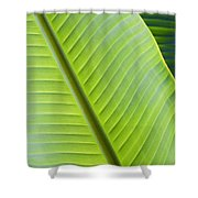 Green Tropical Leaves Shower Curtain