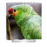 Green Tropical Parrot, Side View. Shower Curtain