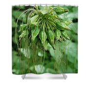 Green Vines Shower Curtain