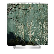 Green Wall Abstract Shower Curtain